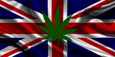 Pot-in-the-UK