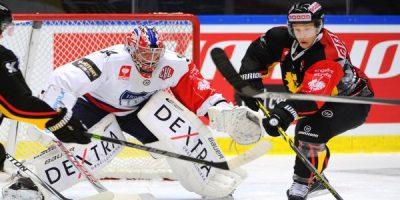 rsz_swedish_hockey_league